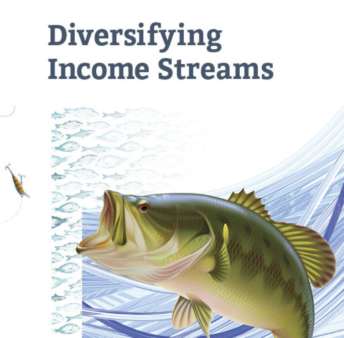 Diversifying Income Streams (2016) [Digital]