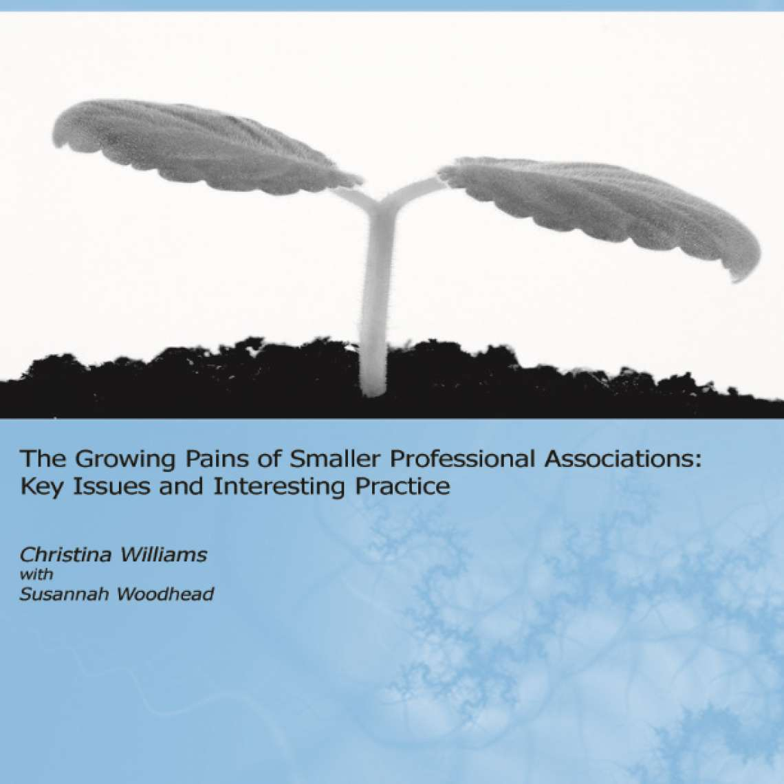 The Growing Pains of Smaller Professional Associations (2007)