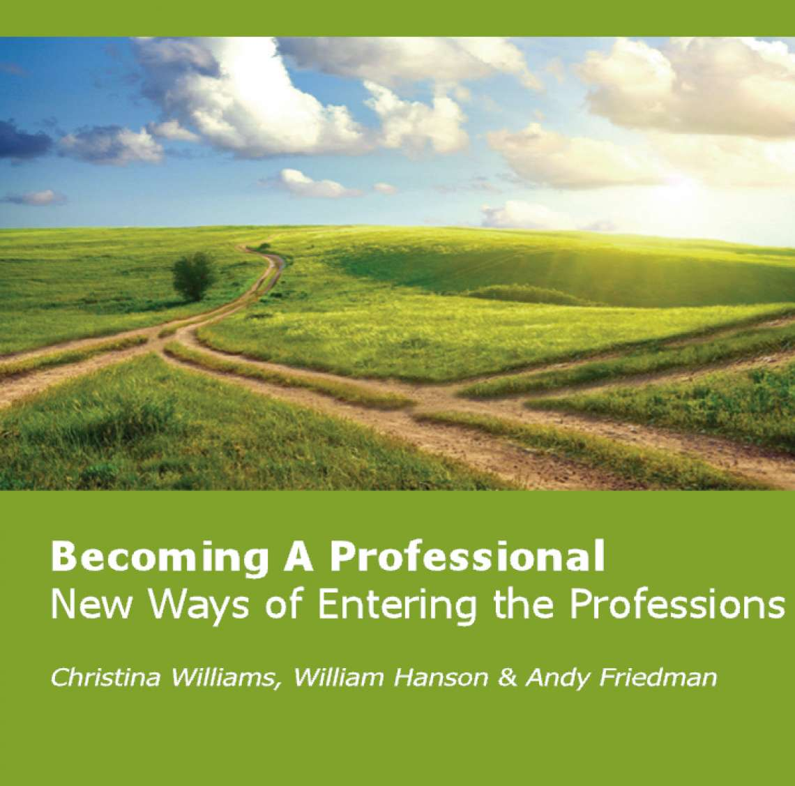 Becoming A Professional: New Ways of Entering the Professions (2012) [Digital]